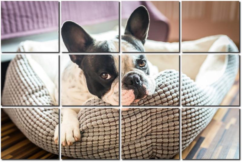 Canvas Tiles Photo Effect Preview
